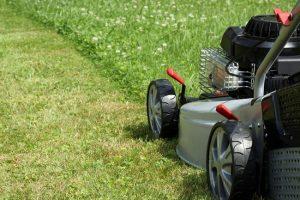 lawn care myrtle beach